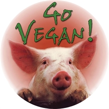 Go Vegan - Button